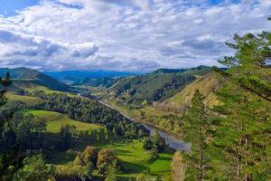 Blick über die Landschaft des Whanganui River
